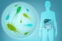 O microbioma intestinal modula a associação protetora entre uma dieta mediterrânea e o risco de doença cardiometabólica